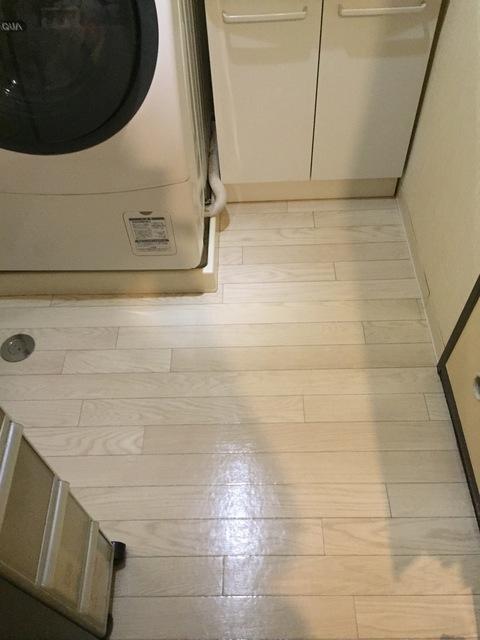 洗面所の狭い空間.jpg